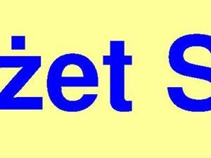 Środki statutowe 2020